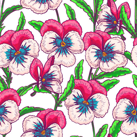 pansies: seamless background with pink pretty pansies. hand-drawn illustration