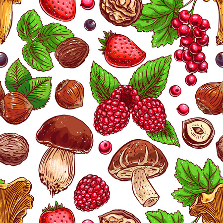 cep: Cute seamless background with colorful ripe berries, nuts and mushrooms. hand-drawn illustration