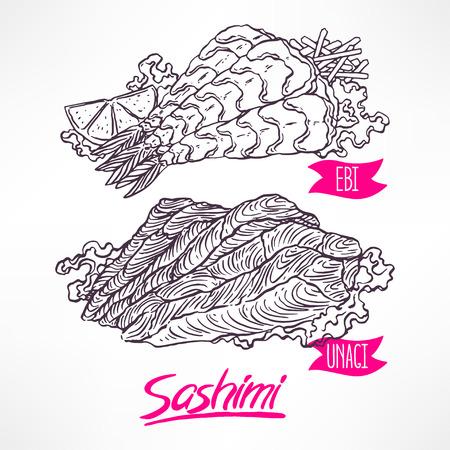 eel: Set with two kinds of sashimi. shrimp and eel. hand-drawn illustration Illustration