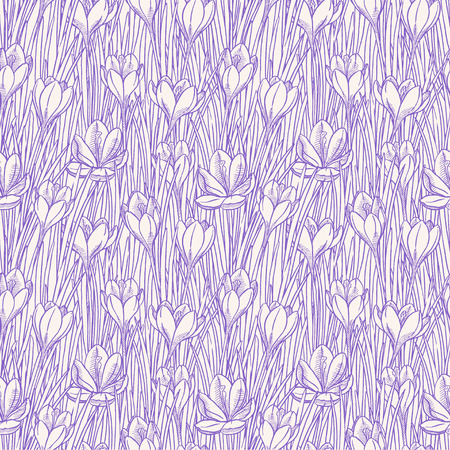 crocus: beautiful seamless background with sketch crocuses. hand-drawn illustration