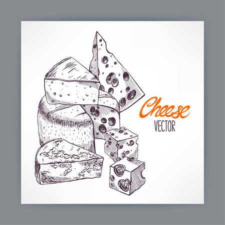 brie: background with various appetizing sketch cheeses. hand-drawn illustration