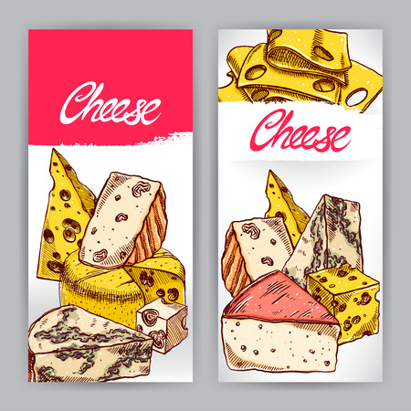 brie: two banners with various appetizing cheeses. hand-drawn illustration Illustration
