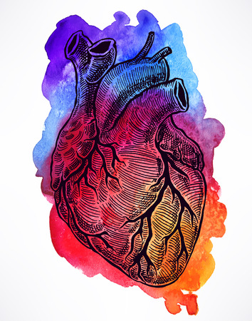 beautiful human heart on a watercolor background. hand-drawn illustration