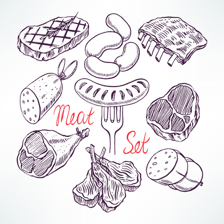 pork meat: set of appetizing meat products. hand-drawn illustration