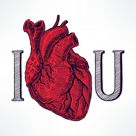 part of me: te quiero. hermoso coraz�n humano. dibujado a mano ilustraci�n Vectores