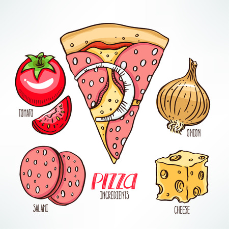 ingredients: pizza ingredients. piece of pizza with salami. hand-drawn illustration