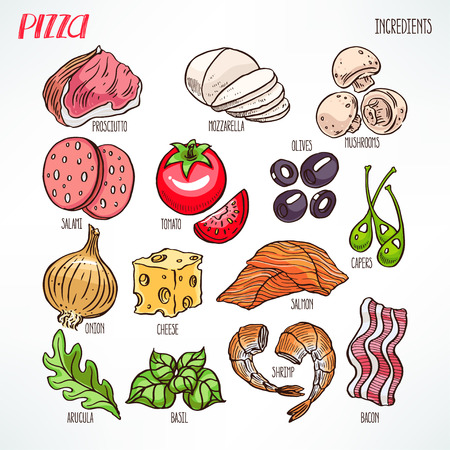 greens: pizza ingredients. bacon, greens, cheese, tomatoes. hand-drawn illustration