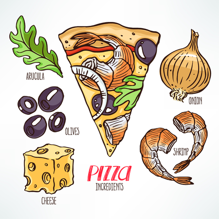 piece: pizza ingredients. piece of pizza with shrimps. hand-drawn illustration