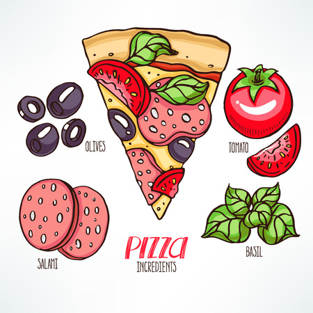 pizza ingredients: pizza ingredients. piece of pizza with salami and basil. hand-drawn illustration
