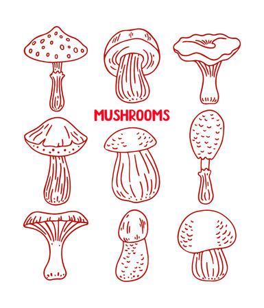 sketch: set of sketch mushrooms