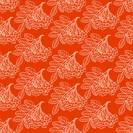 bunches: beautiful seamless pattern with bunches of sketch rowan. hand-drawn illustration Illustration