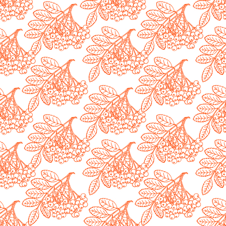 bunches: beautiful seamless pattern with bunches of ripe sketch rowan. hand-drawn illustration Illustration