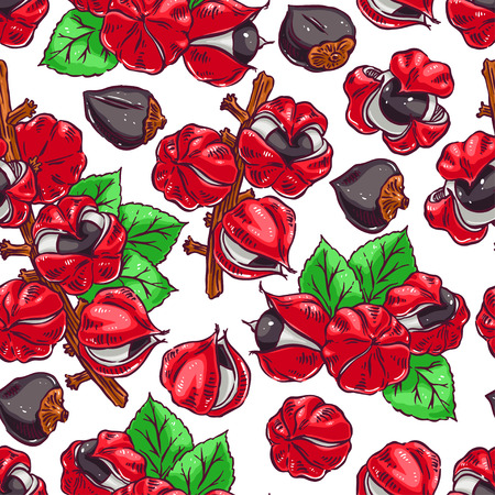 Beautiful colorful seamless background of guarana. hand-drawn illustration 向量圖像
