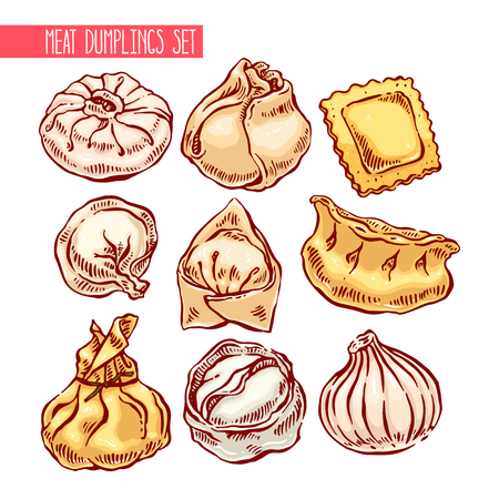 appetizing: appetizing set of different dumplings. hand-drawn illustration