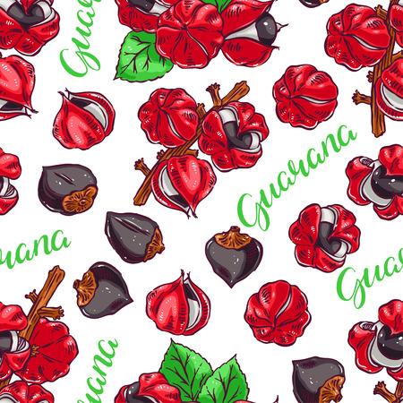 Beautiful colorful seamless background of guarana. hand-drawn illustration Illustration