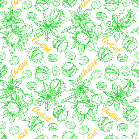 beautiful seamless pattern of sketch chestnuts. hand-drawn illustration
