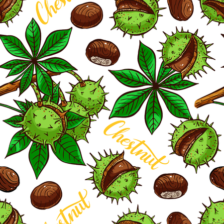 nutty: beautiful seamless pattern of different colorful chestnuts. hand-drawn illustration