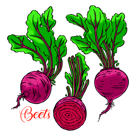 Set of ripe beets.