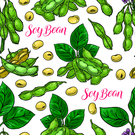 cute seamless background of soyabeans. hand-drawn illustration