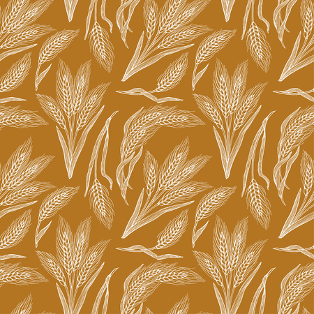 seamless background of wheat. Hand-drawn illustration