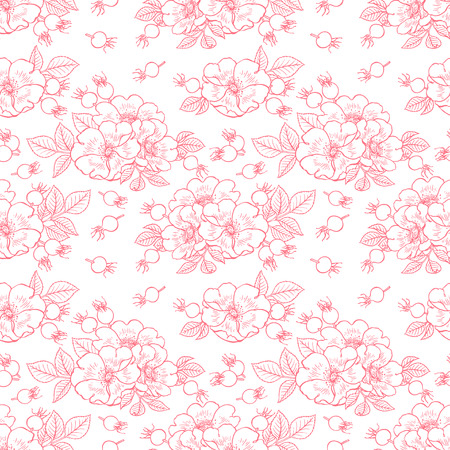 beautiful background of dogrose flowers and fruits. hand-drawn illustration