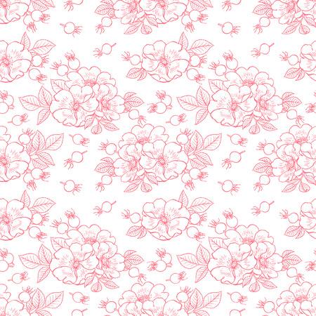 bellissimo sfondo di fiori e frutti di rosa canina. illustrazione disegnata a mano