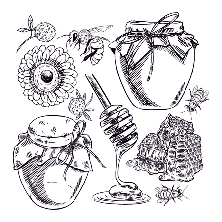 Cute honey set. jars of honey, bees, honeycomb. hand-drawn illustration