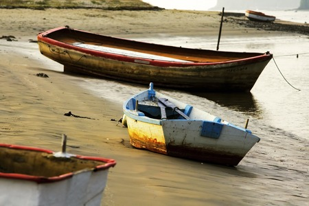 rowboats: rowboats moored on seashore at sunset
