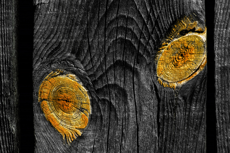 floo: old knotted shaped like eyes wooden board closeup Stock Photo