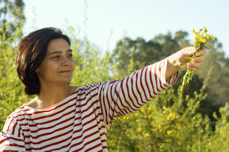 teaches: woman with sailor shirt teaches wild flowers in the field