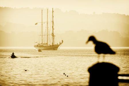 Tall Ships races August 8 , 2012 in Coruna , Spain ; Pogoria  sail training ship Editorial