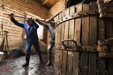 winepress: making wine of grape farmers in traditional winepress in Villarejo de Orbigo, Leon, Spain; With slow shutter speed flash Stock Photo