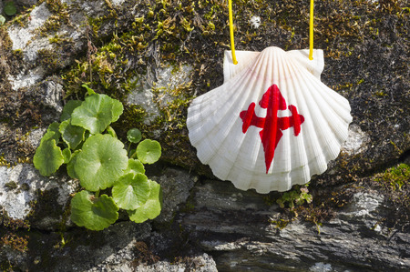 saint jacques: pilgrim shell  on the rocks in  Way of St James,  Camino de  Santiago, to  Compostela, Galicia, Spain Stock Photo