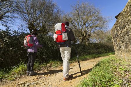 compostela: pilgrims walking , Way of St James,  Camino de  Santiago, to Compostela, Galicia, Spain