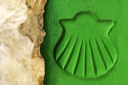 compostela: pilgrim scallop symbol in wooden door, Way of St James, Camino de Santiago, to Compostela, Galicia, Spain