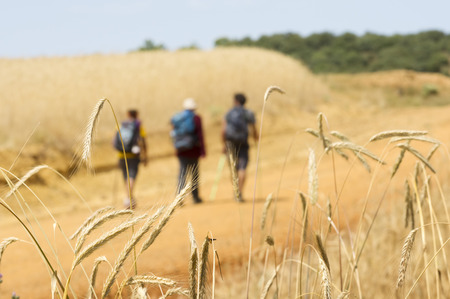 way of st  james: unfocused pilgrims near Astorga , Way of St James,  Camino de  Santiago, to Compostela, Leon, Spain