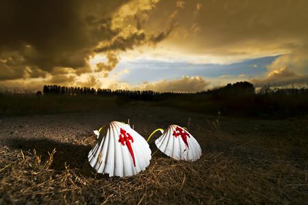 pilgrim scallops on the road at sunset , Way of St James,  Camino de  Santiago, to Compostela, Villarejo de Orbigo village, Leon