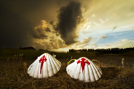 pilgrim scallops on the road at sunset , Way of St James,  Camino de  Santiago, to Compostela, Leon, Spain Stock Photo