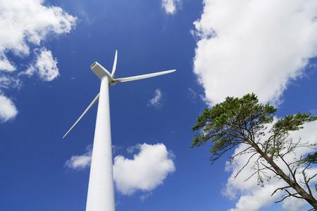 wind turbines in eolic farm , electric wind generators, renewable energy