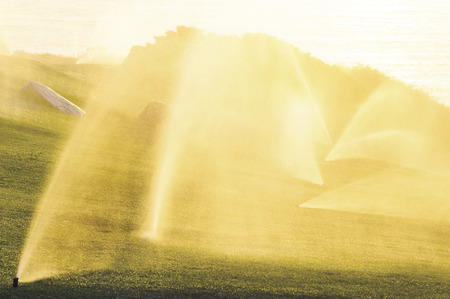 cultivating: Sprinkler in grass field at sunset Stock Photo