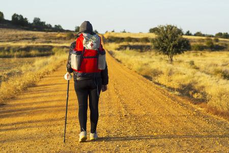 way of St James pilgrim walking  to Compostela near Astorga  , Leon , Spain Stock Photo