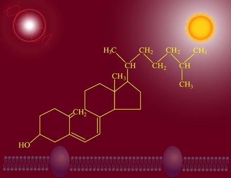 quimica organica: Vitamina D