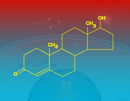 testosterone: Testosterone molecular structure