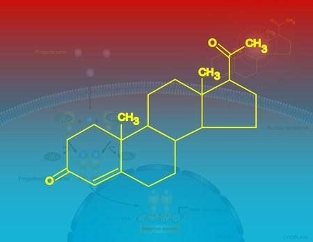progesterone: Progesterone molecular structure