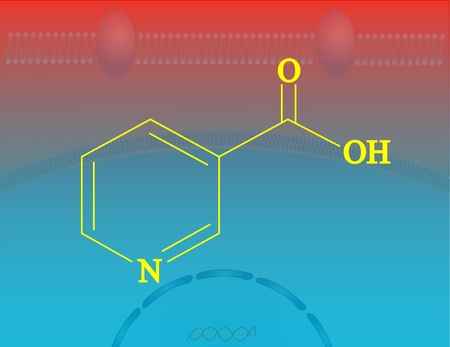 nicotinic: Niacin molecular structure