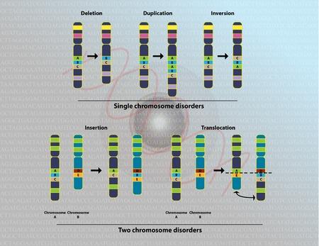 cromosoma: Las anomalías cromosómicas Foto de archivo