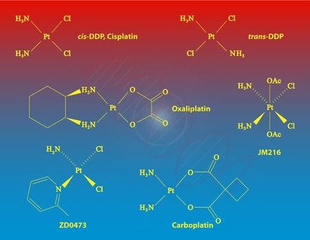 apoptosis: Cisplatino andother platino drogas