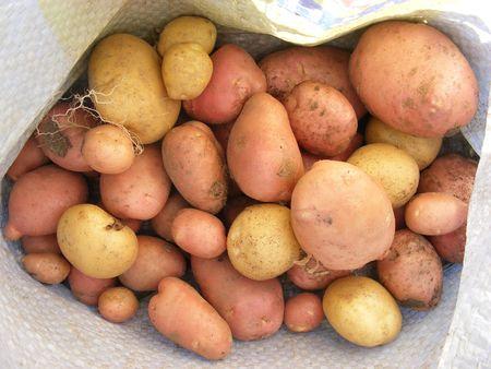 potatoe in a sack Stock Photo