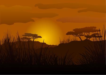 Sunset in the savanna Stock Vector - 8001546