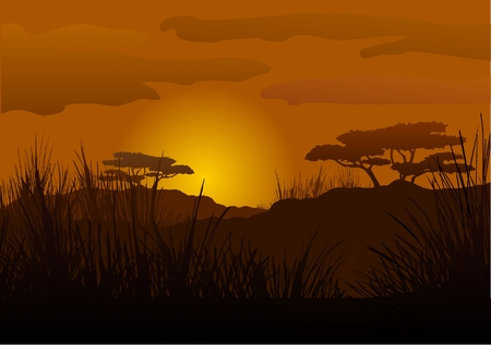 horizon over land: Sunset in the savanna
